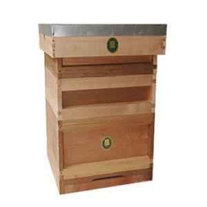 National Cedar Bee Hive