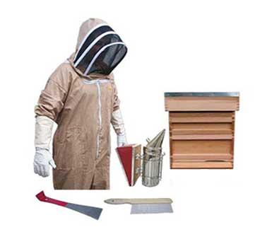 Bee Hive Starter Kit